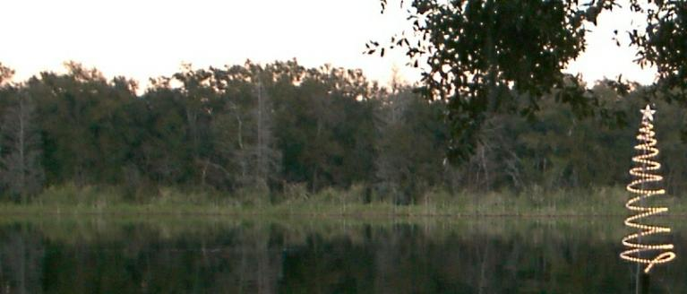 Curry Lake, Tampa, Florida. Lake Curry in River Grove.
