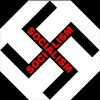 swastika hakenkreuz 2 S letters for socialism under the Nazis
