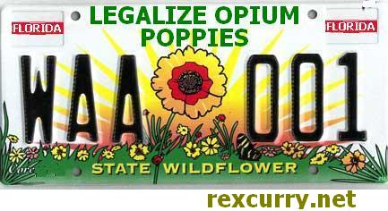 LEGALIZE DRUGS stop sting operations thumbnail image recreational controlled substances