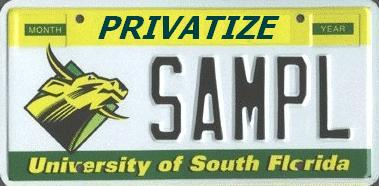 university & college instructors professors adjunct faculty teachers GOVERNMENT SCHOOLS MUST END Privatize USF